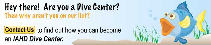 dive center contact us